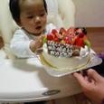 Happy Birthday!!  はっくん!!