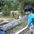 仙台の動物園へ